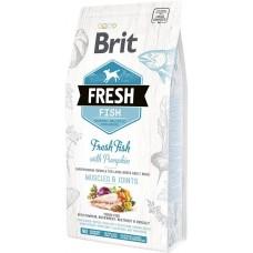 Brit Fresh Adult Large with Fish and Pumpkin  (рыбой и тыквой)