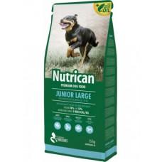 Nutrican Junior Large  (с курицей)