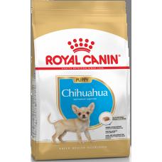 Royal Canin Chihuahua Puppy ( Junior)